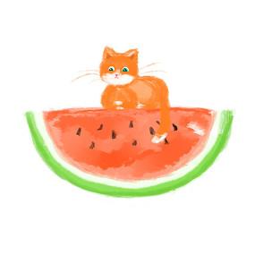 夏天的西瓜和猫