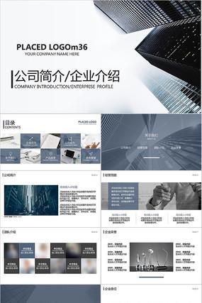 公司简介计划商业项目计划书ppt