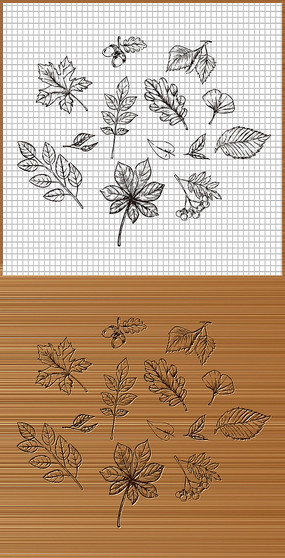 秋天叶子矢量图案