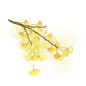 水彩手绘银杏叶黄叶秋天秋天