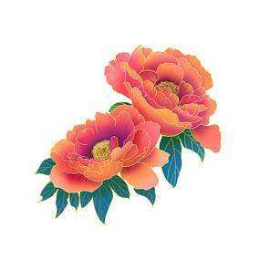 国潮金边国花牡丹花卉