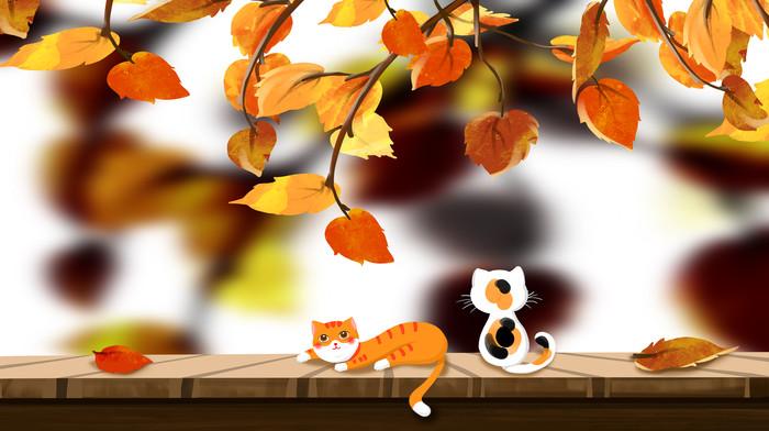 秋日树下长椅上的猫咪