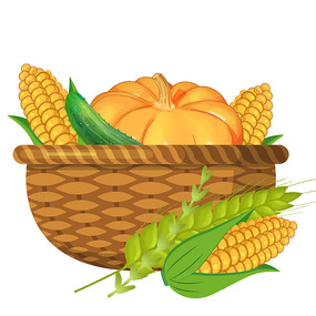 秋天丰收玉米篮子卡通手绘麦穗南瓜黄瓜