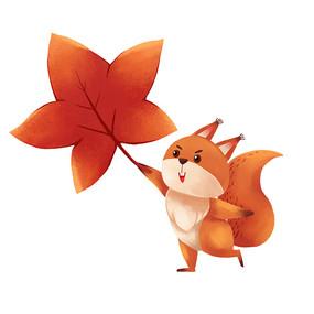 小松鼠拿着枫叶玩耍