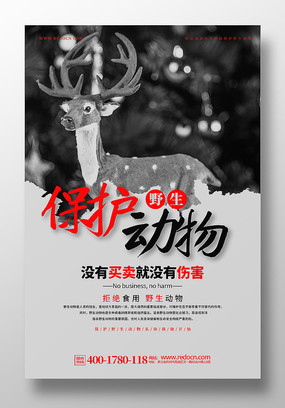 黑灰色保护野生动物公益宣传海报设计