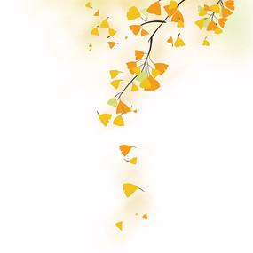 树枝银杏叶秋天