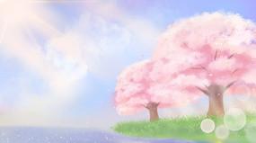 唯美樱花春天壁纸
