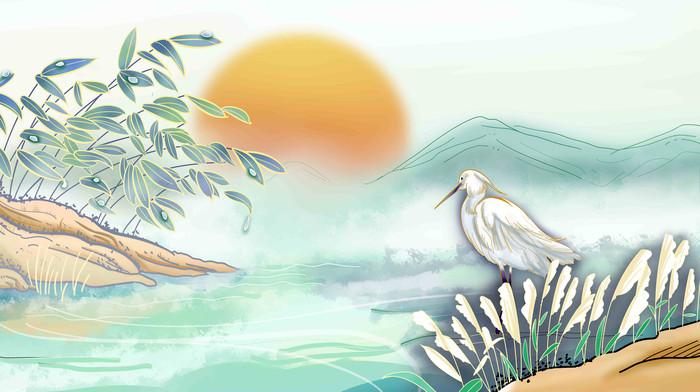 节气白露中国风芦苇白鹭