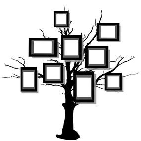 树上照片框