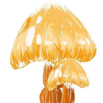 秋天手绘水彩大蘑菇插画