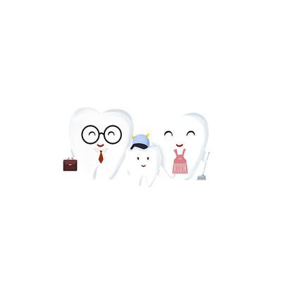 牙齿一家人
