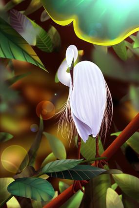 白露白鹭叶子