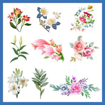 手绘水彩花朵插画小清新婚礼花卉素材