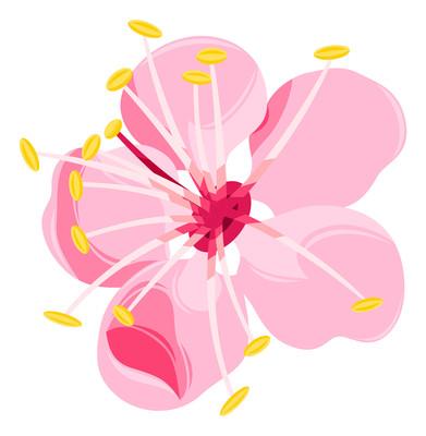 一朵桃花元素