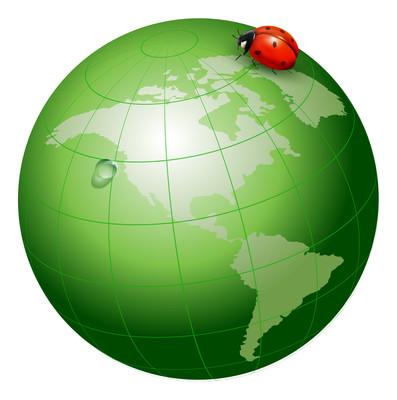 绿色地球跟七星瓢虫