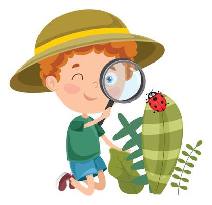 男孩拿着放大镜研究叶片上的七星瓢虫