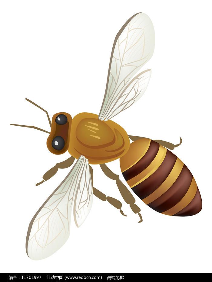 手绘卡通蜜蜂动物元素图片