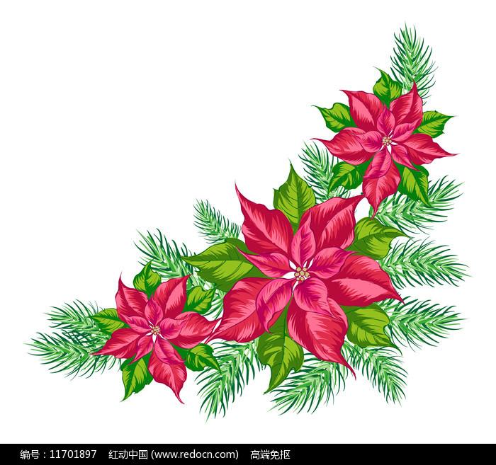 小清新红色花朵图片