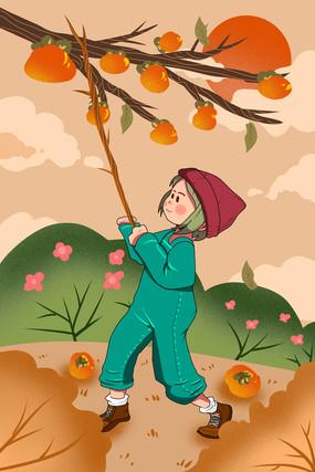 霜降采柿子插画