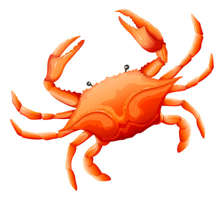 卡通蒸熟的大螃蟹