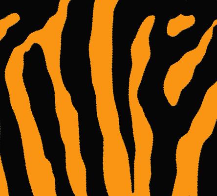 老虎纹理背景图片