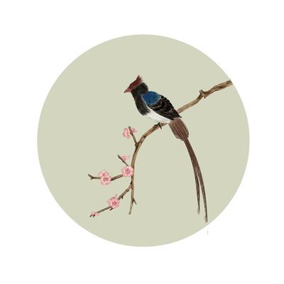 工笔画鸟和花