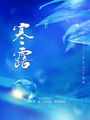 传统二十四节气之寒露宣传海报