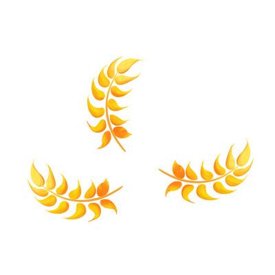 金色麦穗手绘插画元素