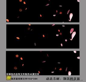 玫瑰视频背景