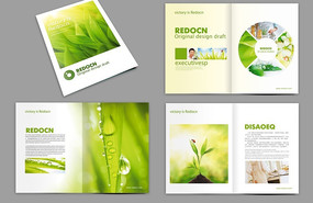 绿色画册设计