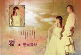 阳光森林婚纱写真设计模板