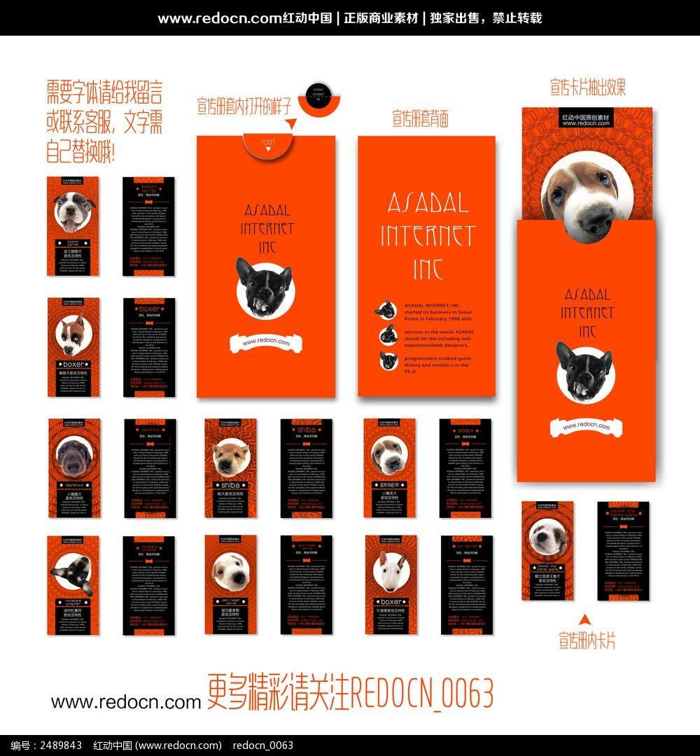 宠物店宣传画册设计图片