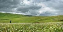 乌云密布下的草原
