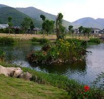 宁波天童风景区山水风景