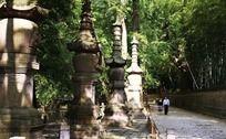 天童寺七塔风景