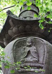 天童寺七塔佛像