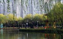 温州马鞍池湖畔风景