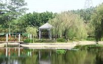 清澈湖水边的亭子