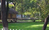 绿色草地上的小木屋