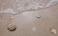 海浪冲刷小石块与贝壳