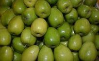绿色的青果