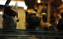 木头猫咪公仔