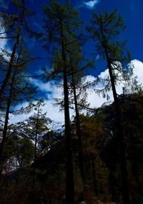毕棚沟自然景观