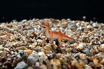 站在沙堆中的恐龙玩具