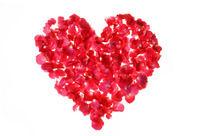 红色花瓣组成的心形