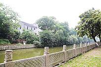 树木河流风景图
