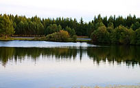 倒影在湖水中的绿树美景