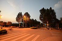 路灯灯光下的马路