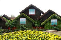 被绿植装饰成的小屋