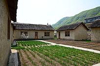 温馨的农家小院